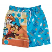 Paw Patrol Swim Shorts - Pups At Play